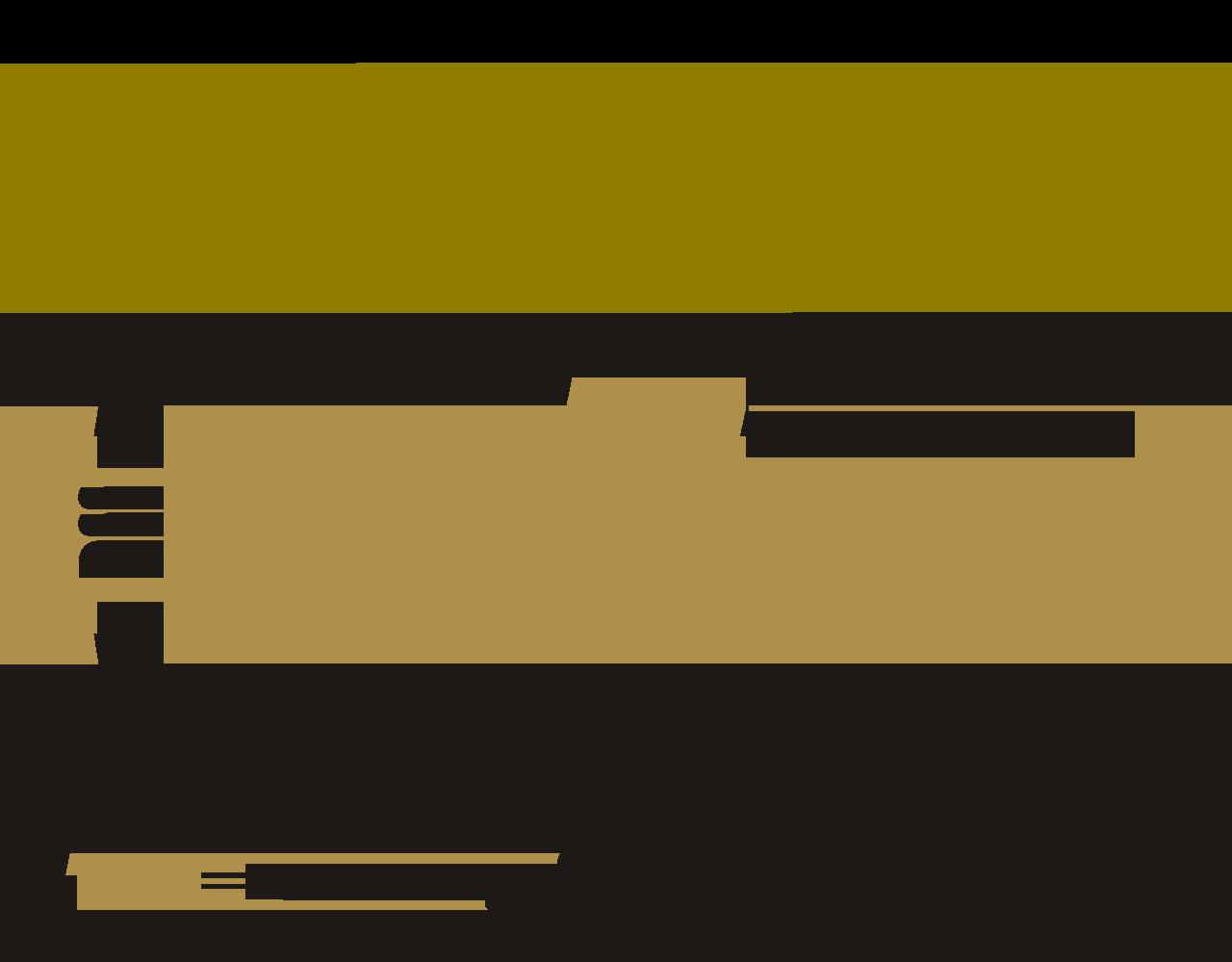 SAN-BF1