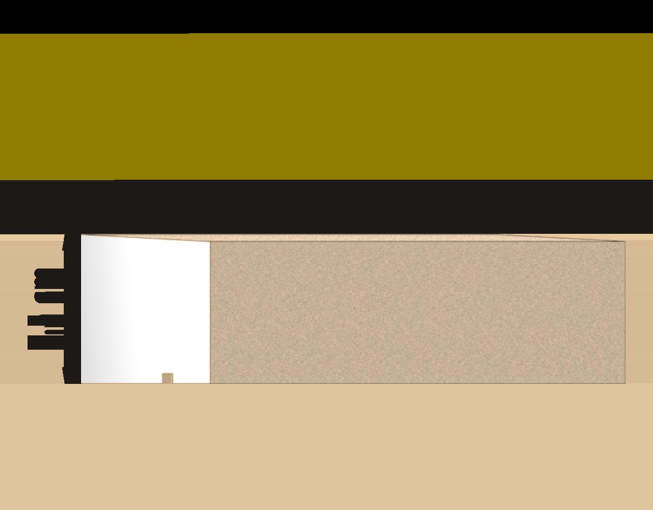 SAN-F-202